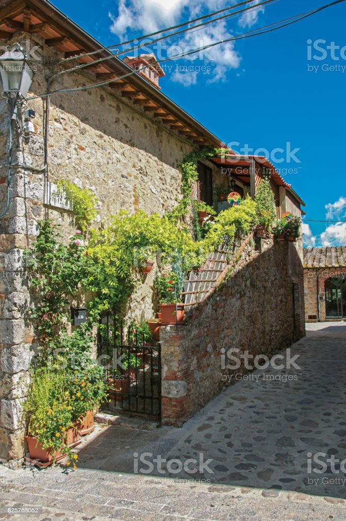 View of staircase with plants from an old house in the hamlet of Monteriggioni. stock photo