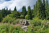 View of stone river big granite stones on rocky river