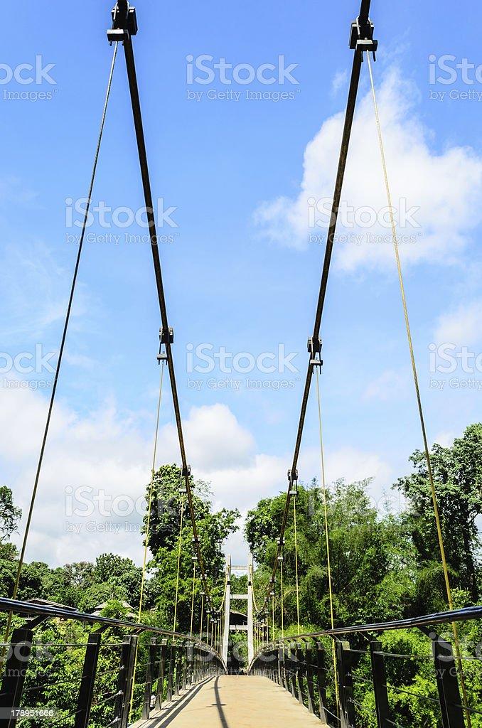 View of Suspension Bridge royalty-free stock photo