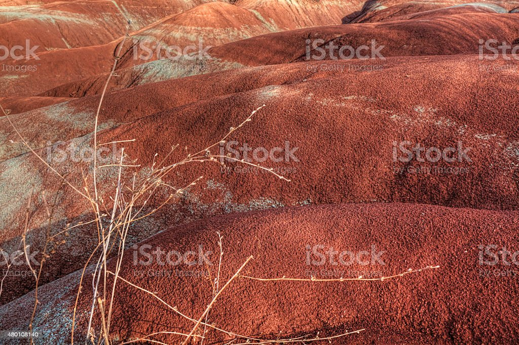 View of the badlands, Canada stock photo