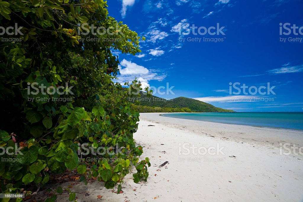 View of the beach and greenery at Cape Tribulation stock photo