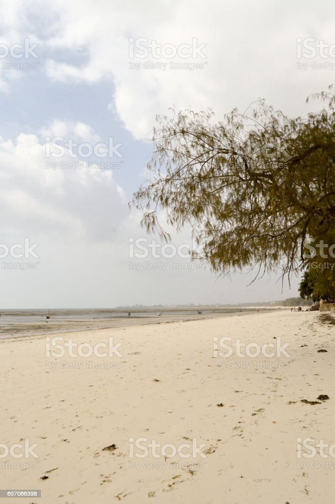 View of the beach and ocean stock photo