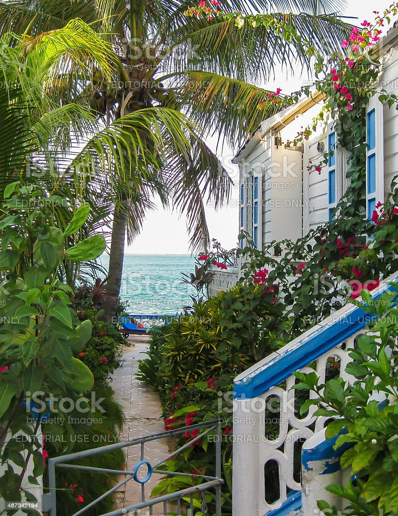 View of the Caribbean stock photo