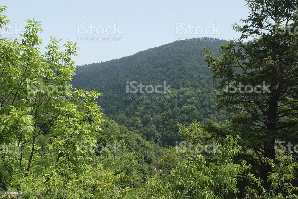 View of the Catskill Mountains royalty-free stock photo
