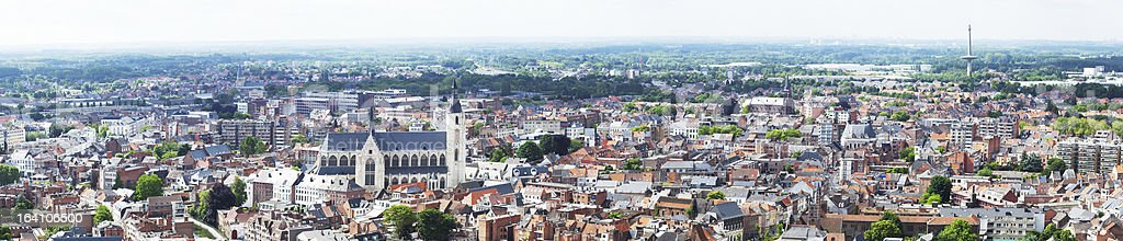 View of the city  Malines (Mechelen) royalty-free stock photo