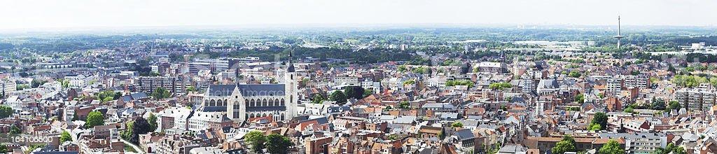 View of the city  Malines (Mechelen) stock photo