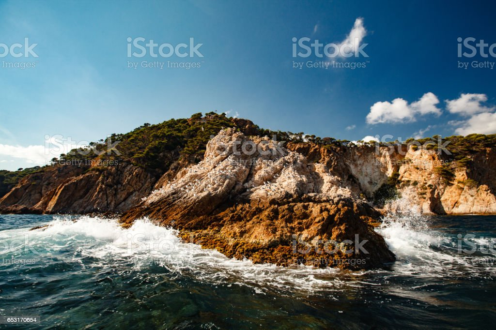 View of the coastal cliff with gulls from the open sea stock photo