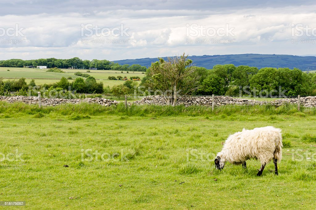 View of the Cotswolds from Cleeve Hill near Cheltenham. stock photo