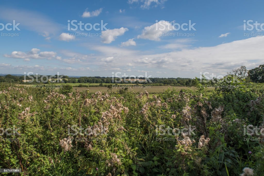 View of the countryside around Cranbrook in Kent stock photo