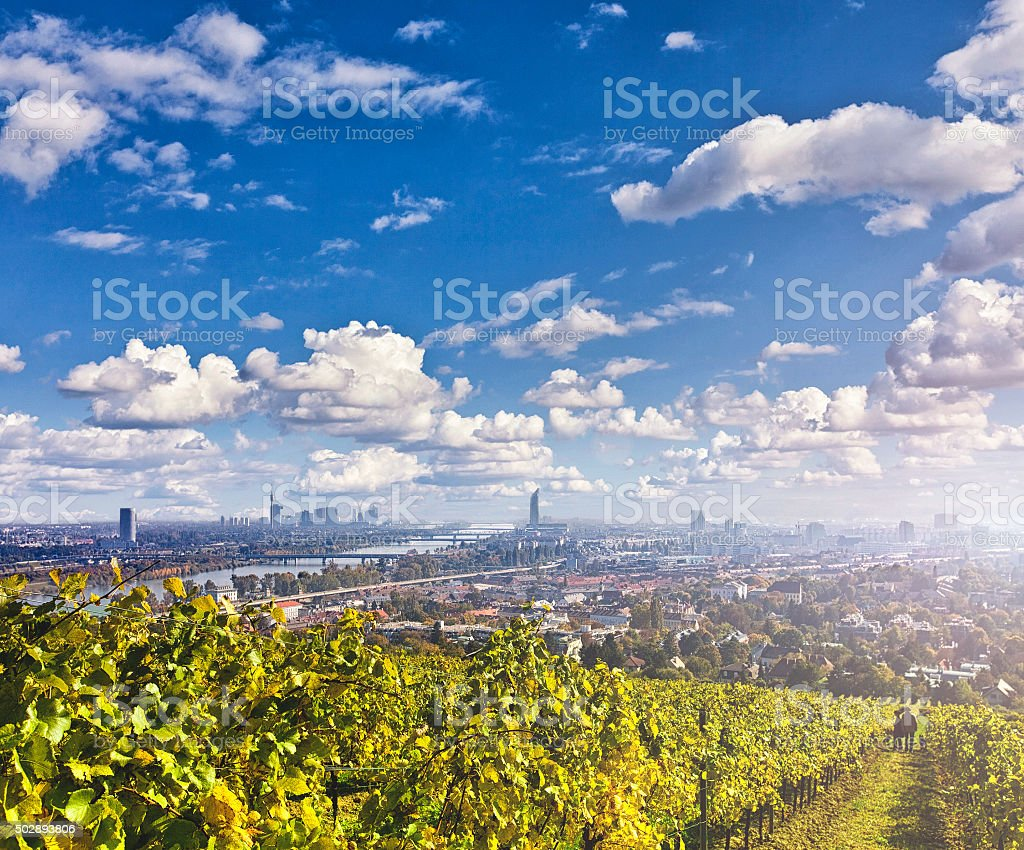 View of the Danube River and the skyline of Vienna stock photo