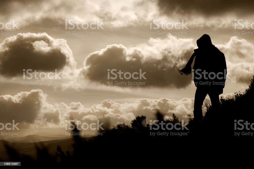View of the Irish Countryside royalty-free stock photo