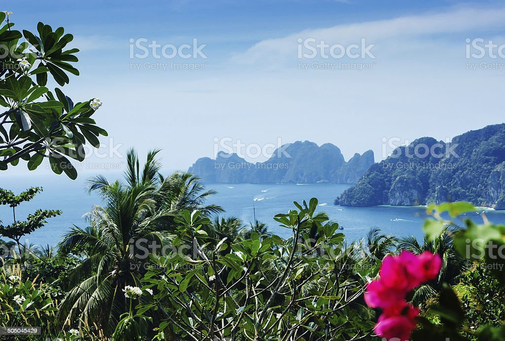 View of the island  Phi Phi Don stock photo