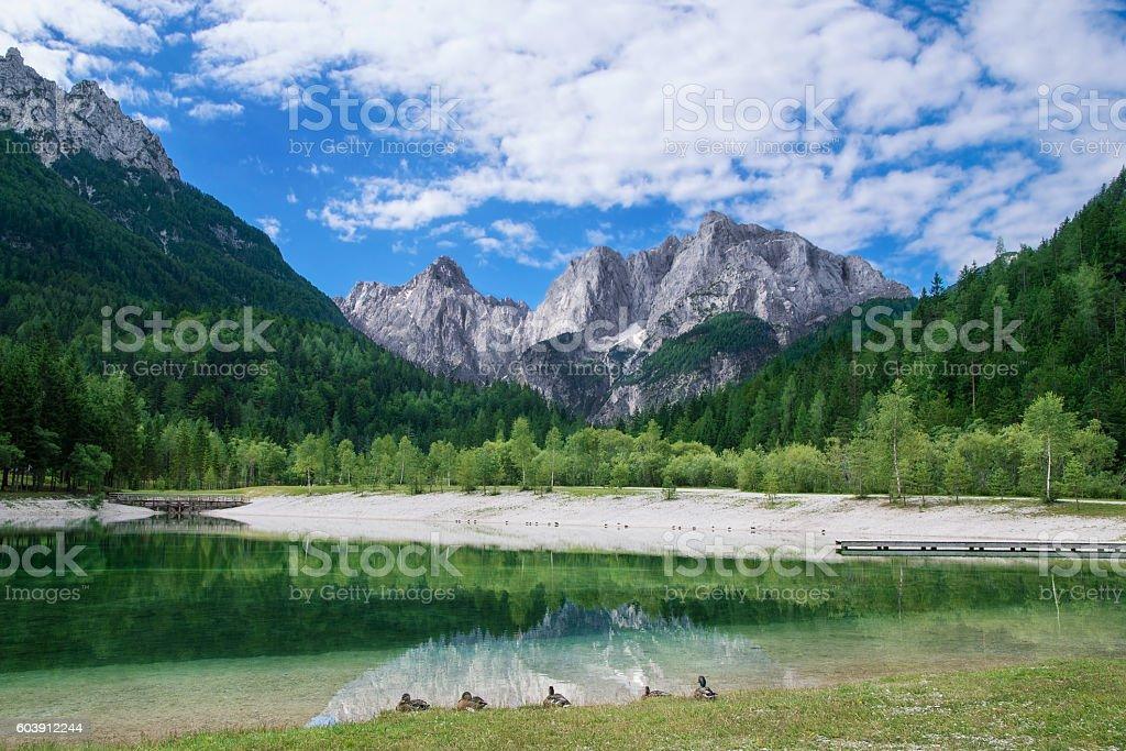 View of the Julian Alps from Kranjska Gora in Slovenia stock photo
