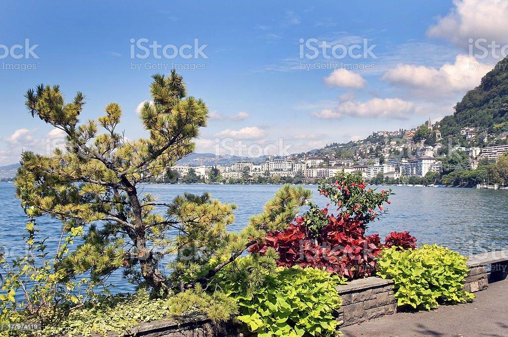 view of the lake Geneva royalty-free stock photo
