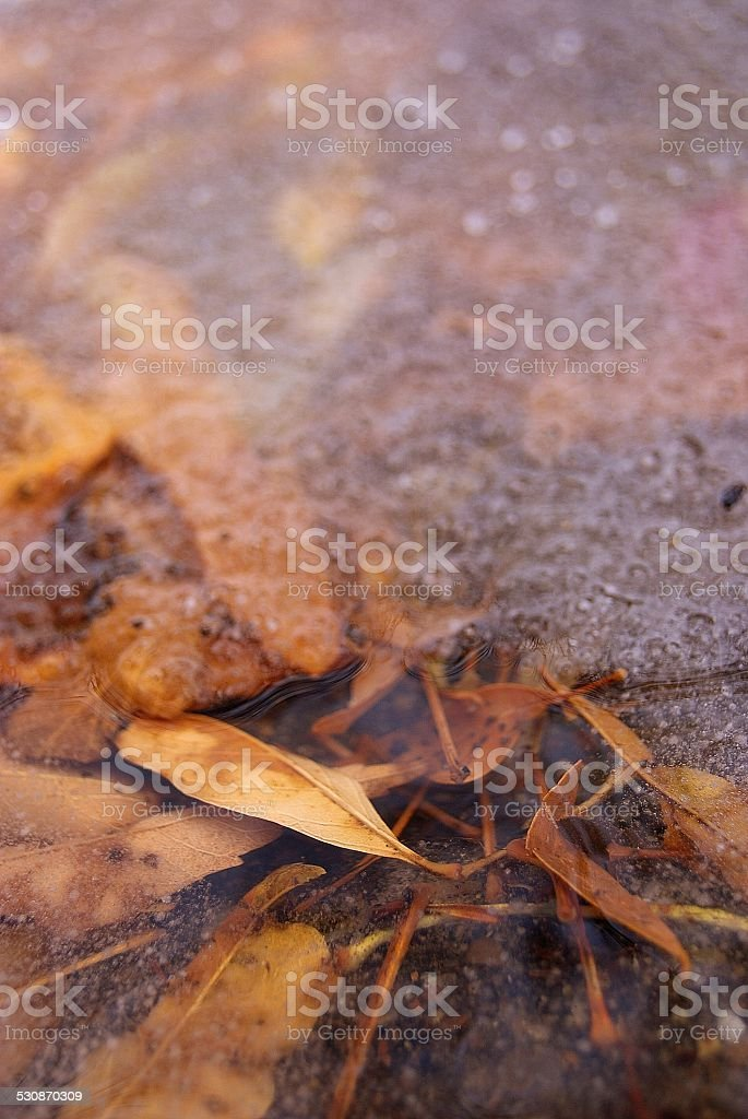 View of the Life Before royalty-free stock photo