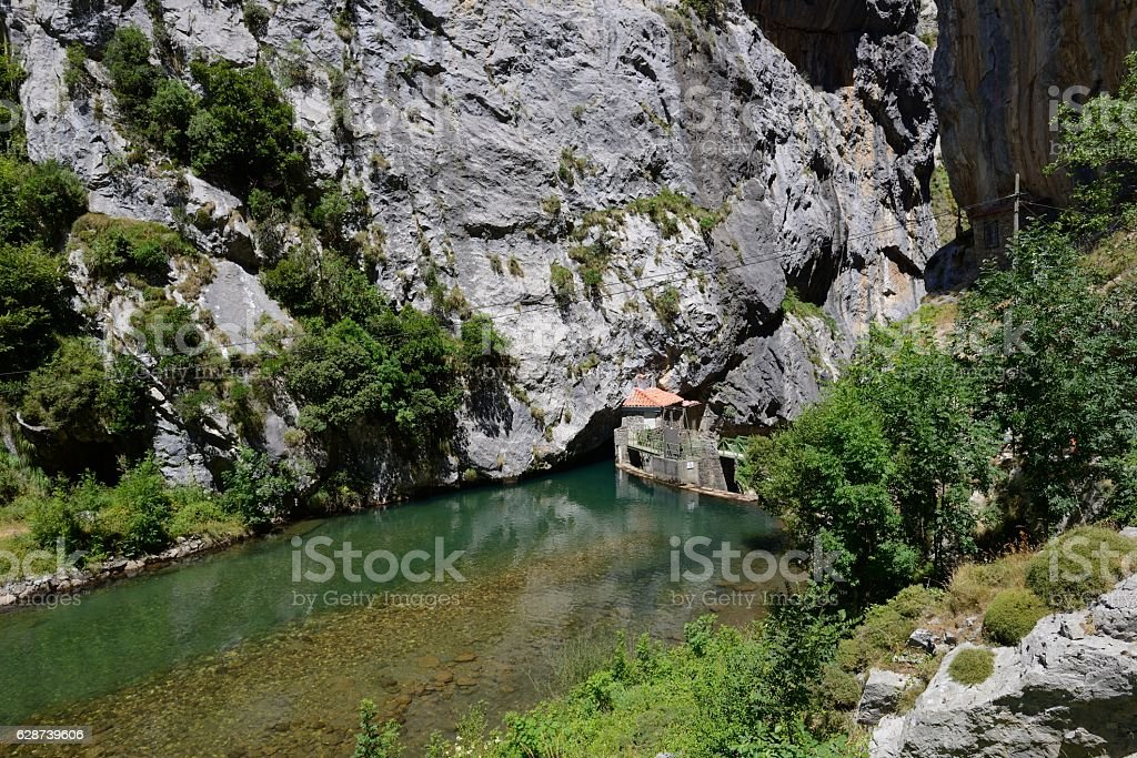 view of the mountain river in the gorge stock photo
