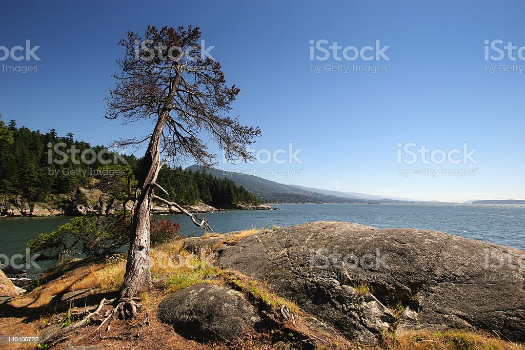 View of the ocean royalty-free stock photo
