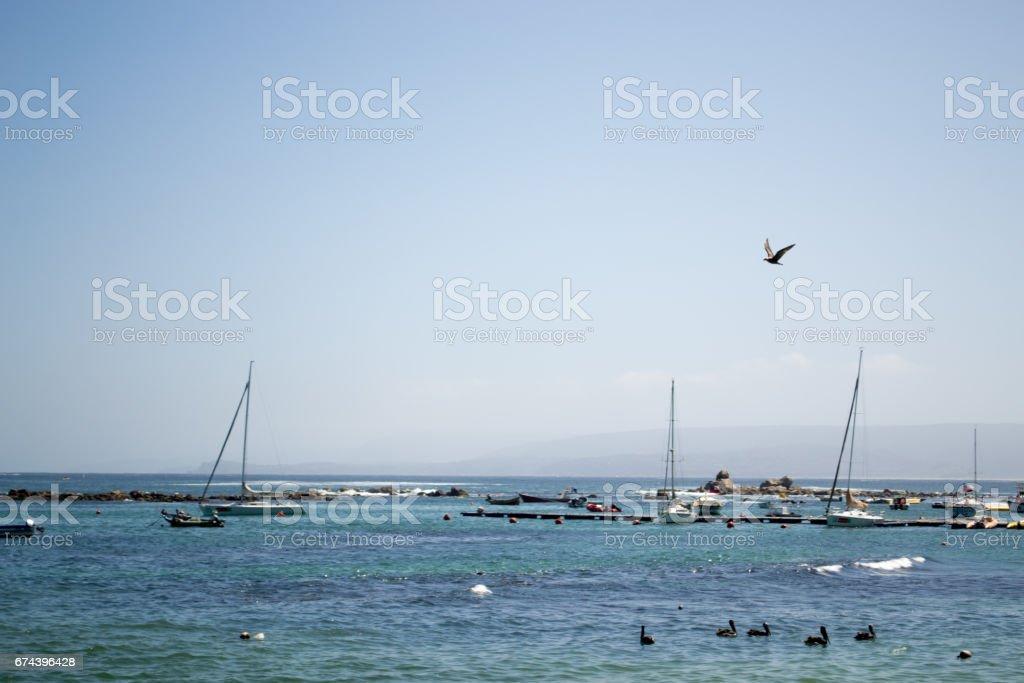 View of the port in Algarrobo Chile stock photo