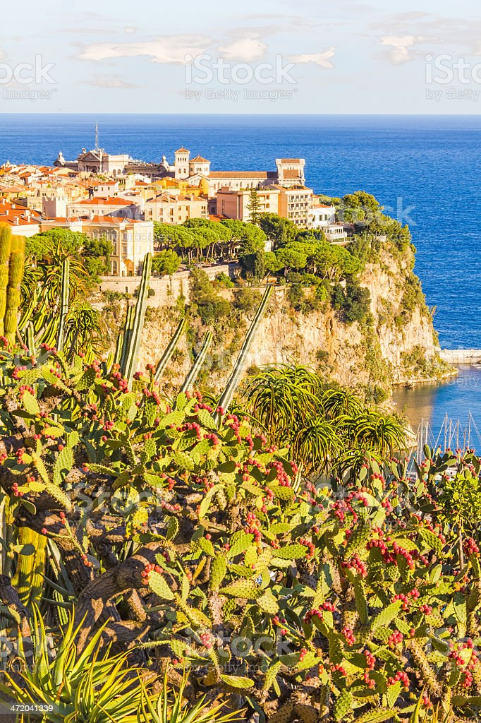 View of the Prince's Palace, Monaco stock photo