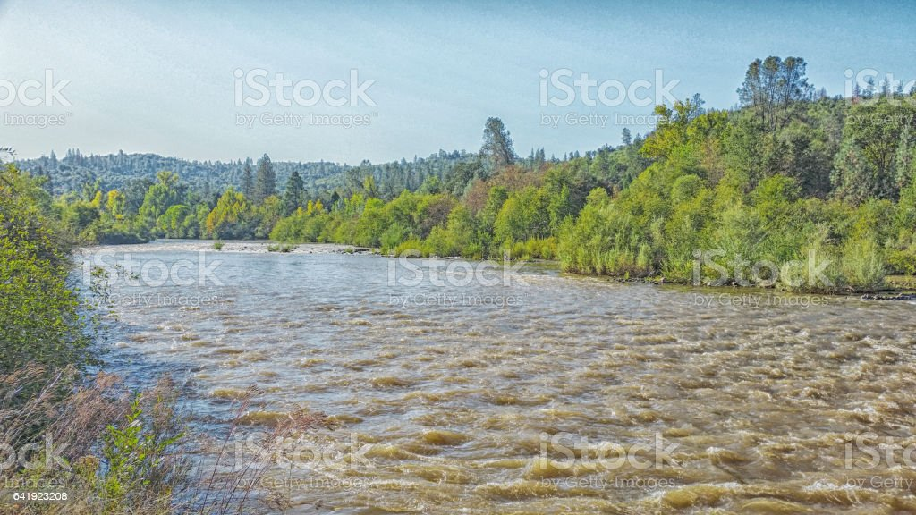 View of the River – American River -California stock photo