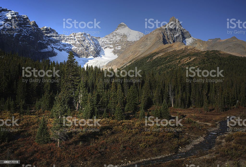 View of the Rocky Mountains along Icefields Parkway stock photo