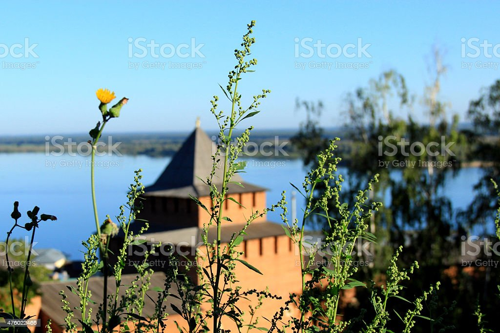 View of the tower on the background of the Volga stock photo
