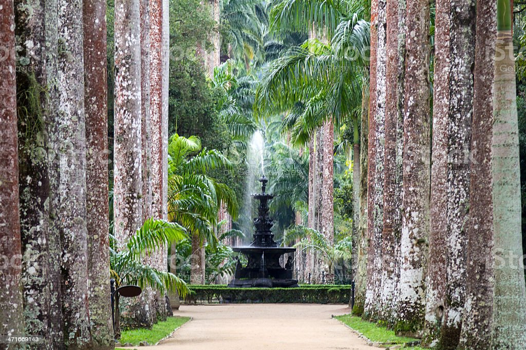 A view of the water fountain at the Jardim Botanico stock photo