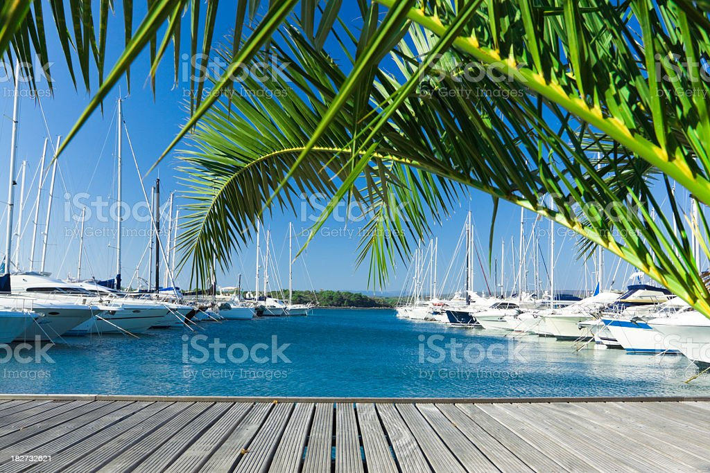 A view of the yachts dock in the pier during summer stock photo