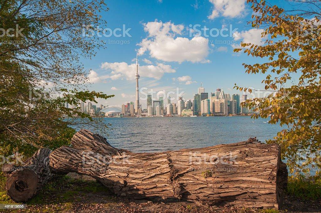 View of Toronto skyline stock photo