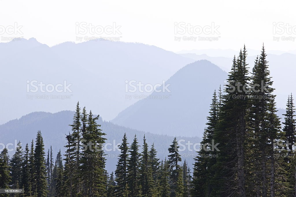 View of Trees and Mountains royalty-free stock photo