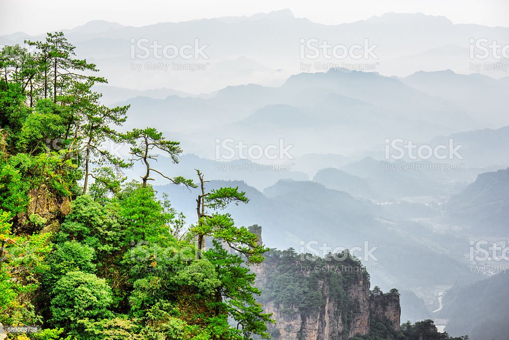 View of trees growing on top of rock, Avatar Mountains stock photo