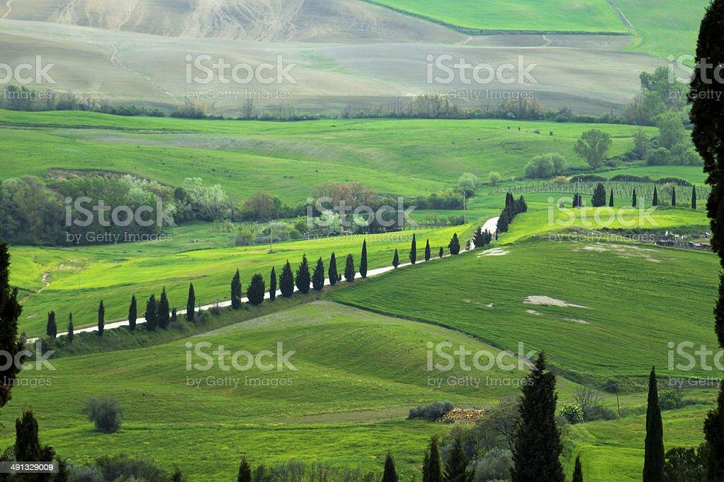 View of Tuscany Hill, Pienza, Italy stock photo