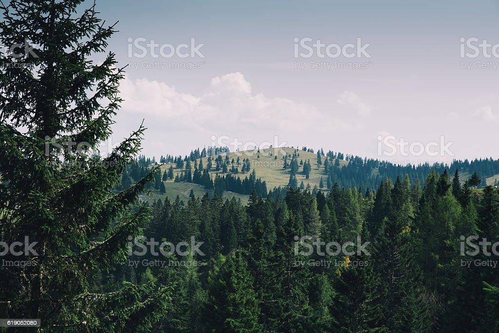 View of Velika Planina or Big Pasture Plateau, Slovenia. stock photo