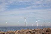 View of windpark in the Dutch Noordoostpolder