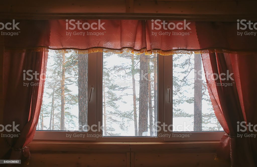 view of winter forest from house window stock photo