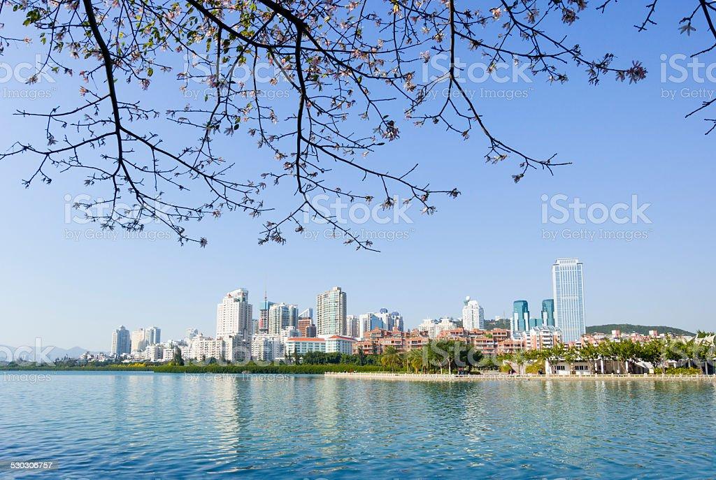 View of xiamen city at Bailuzhou Park park stock photo