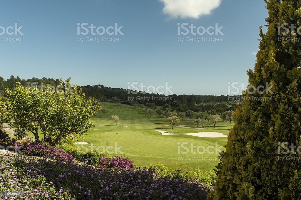 View on a golf green stock photo