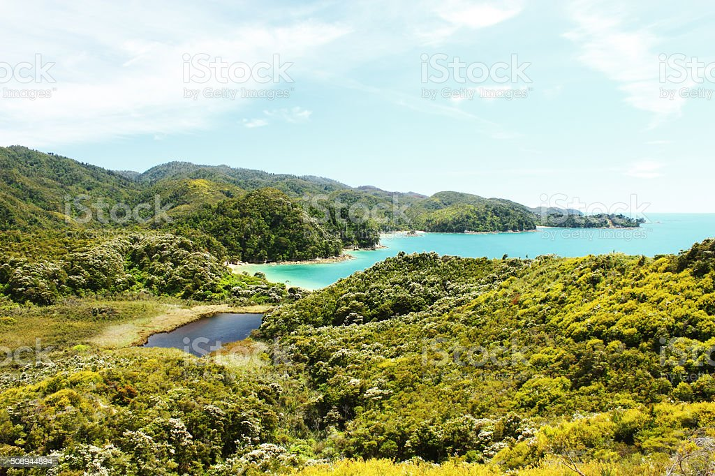 View on Abel Tasman National Park and Pacific, New Zealand stock photo