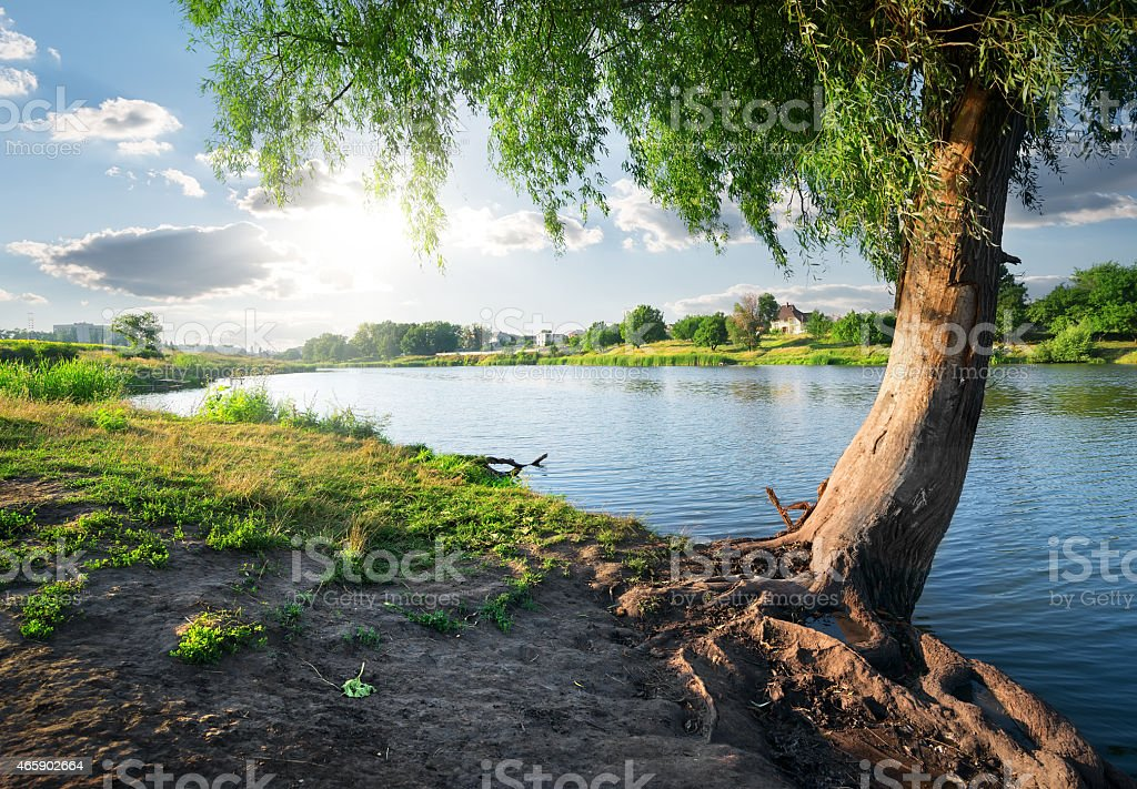 View on river stock photo