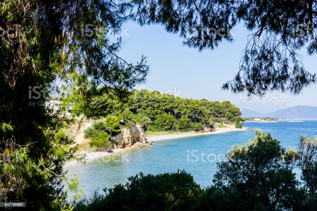 View on the bay trough green vegetation, pine tree stock photo