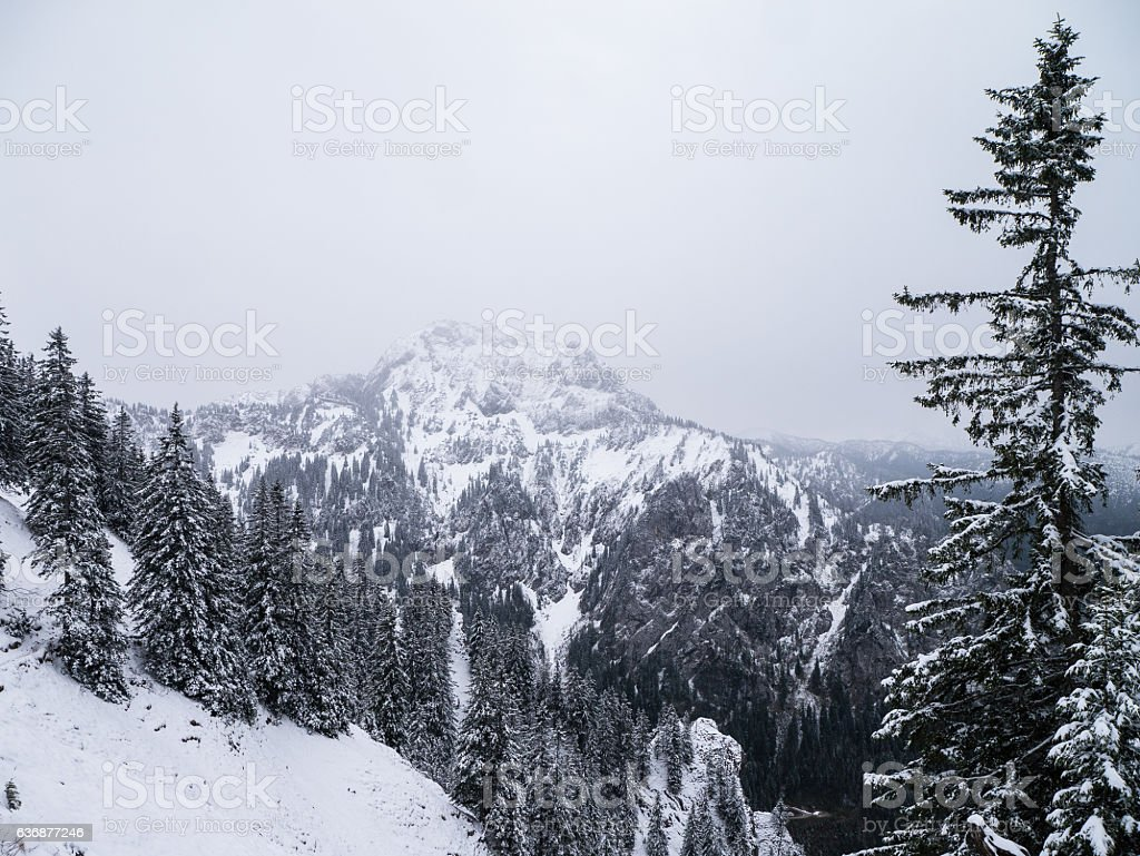 View on the Tegelberg - Germany stock photo
