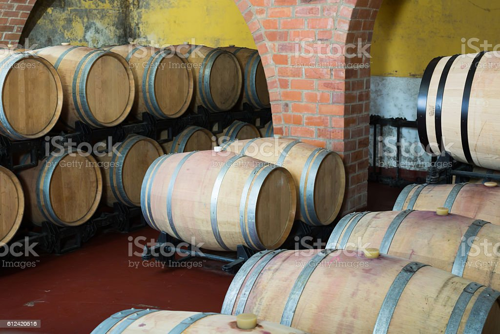View on winery cellar with wine woods stock photo