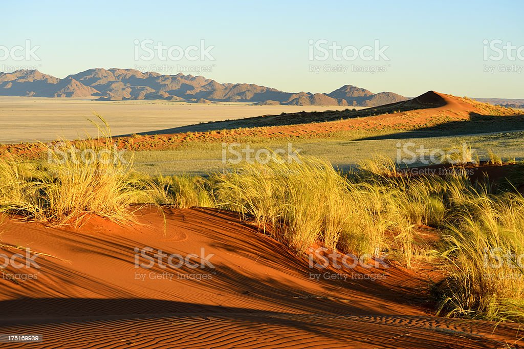 View over a red dune to the horizon royalty-free stock photo