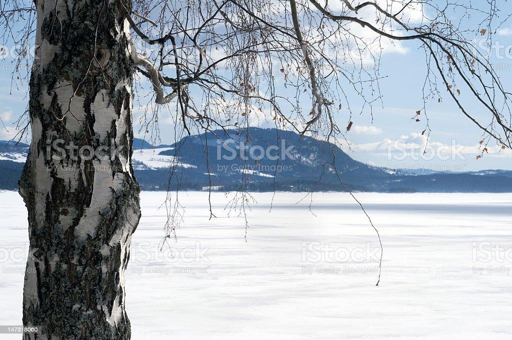 Vista de invierno fiordo foto de stock libre de derechos