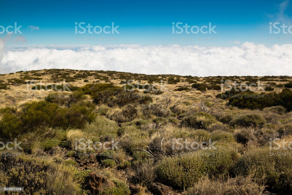 View over clouds in Teide National Park in Tenerife stock photo