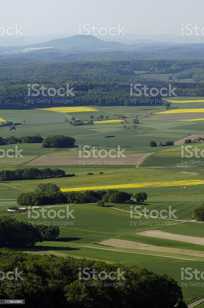 view over fields and forest stock photo