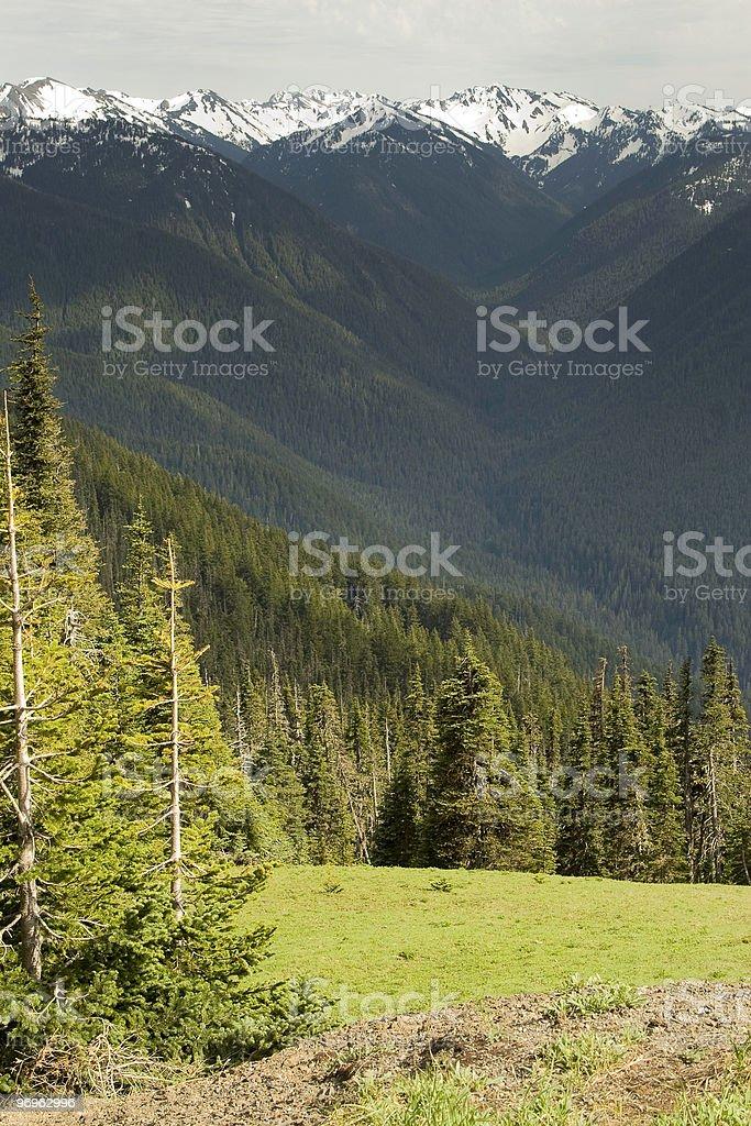 View over Hurricane Ridge royalty-free stock photo