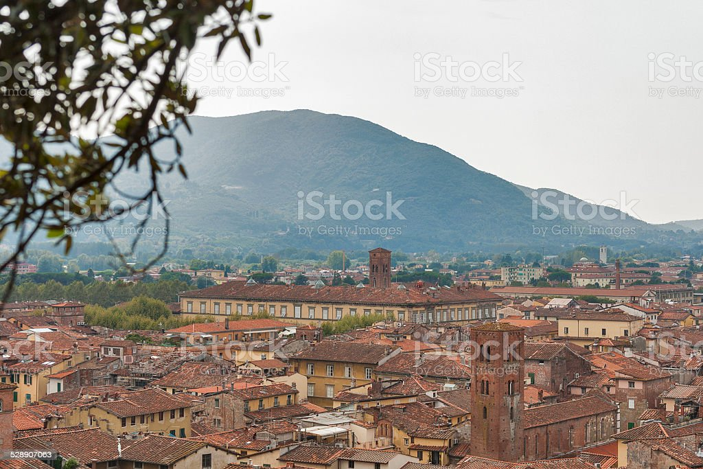 View over Lucca, Italy, from underneath trees on the Guinigi stock photo