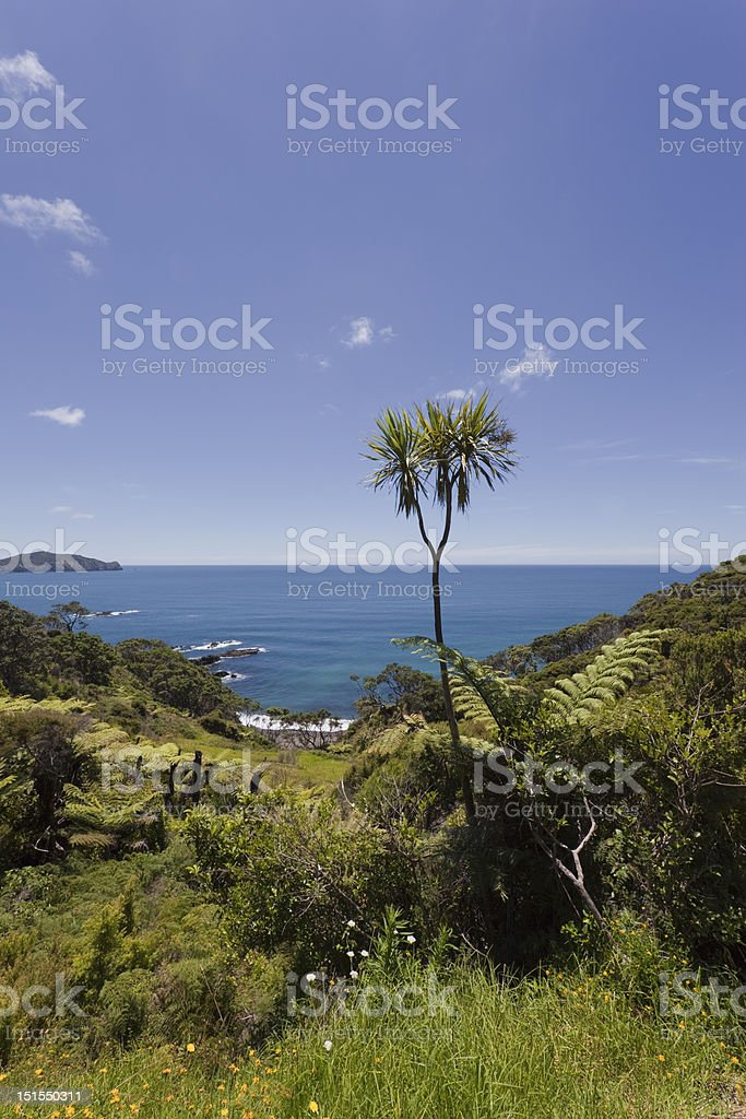 View over Pacific Ocean stock photo