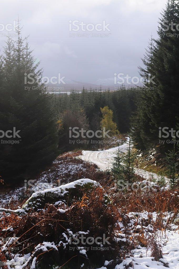 View over Rannoch Moor stock photo